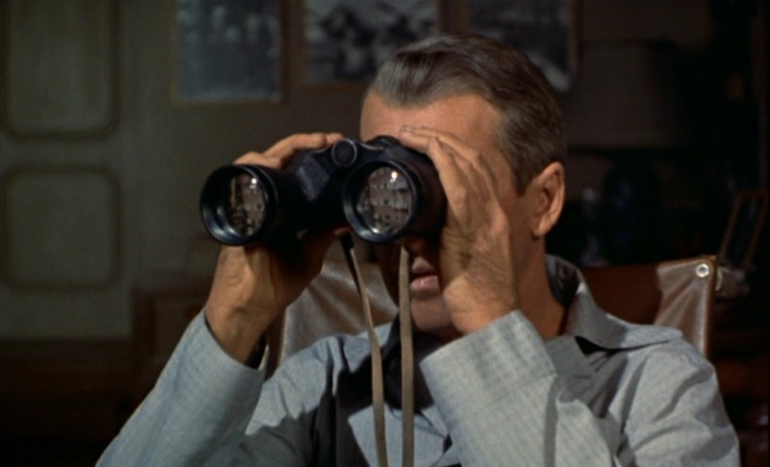 Rear Window (1954) by Alfred Hitchcock